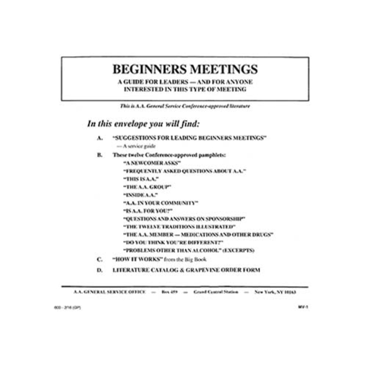 Guide to Leading Beginners Meeting